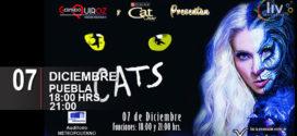Obra CATS en Puebla 28 de noviembre Auditorio Metropolitano